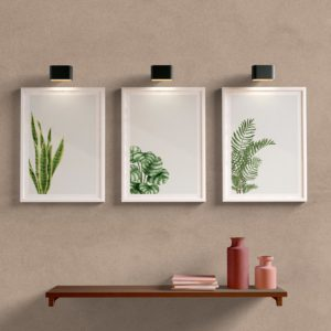 Kit Quadros Decorativos Sala Folhas